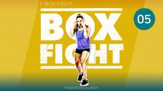 BoxFight 5
