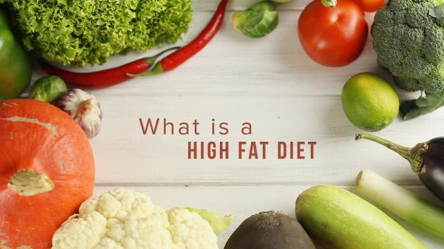 Keto 101 - What is a High Fat Diet?