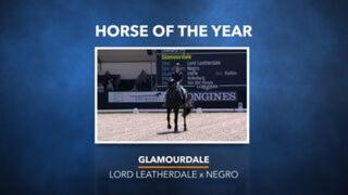 Dressage Horse of the Year - Glamourdale