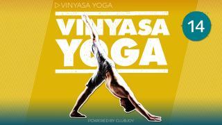 Vinyasa Yoga 14