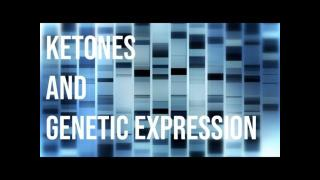 Keto 101 - Ketones and Genetic Expression