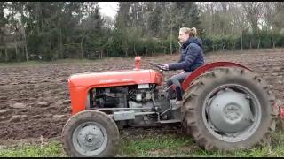Joanne Olofsen van de Hierdense Kakelhoeve ploegt alvast het land om tarwe te verbouwen voor haar kippen