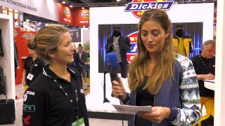 Yes or No Safety Game: Dickies