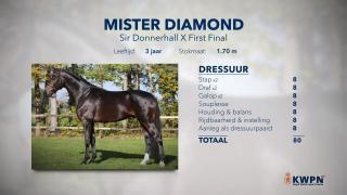 39. Mister Diamond