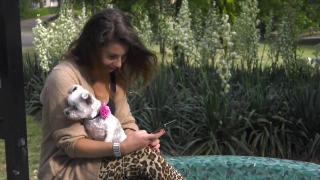 Huisdieren TV | 5.3 | Het hondje van Beau Nellissen