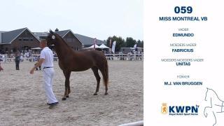 59. Miss Montreal VB