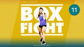 BoxFight 11