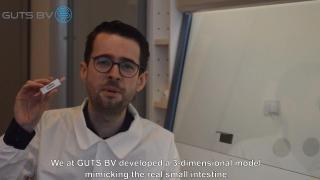 GUTS BV - small intestine-on-a-chip and advanced computational analysis for compound and protein screening