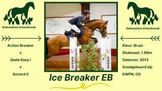 Ice Breaker EB