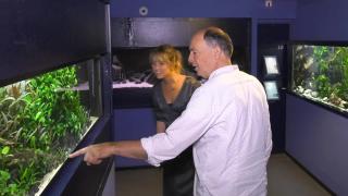 Huisdieren TV | 5.7 | Over Aqua Zoo Leerdam