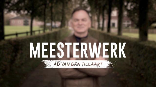 Meesterwerk - Ad van den Tillaart