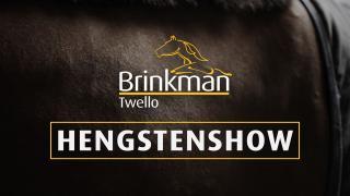 Stal Brinkman - Hengstenshow