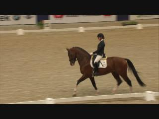 780 - Feel Good, Finale Isah Hengstencompetitie dressuur Klasse Z