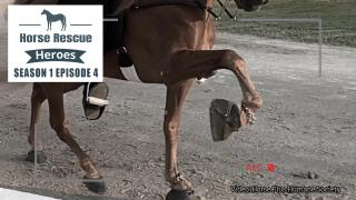 Horse Rescue Heroes S1 Episode 4