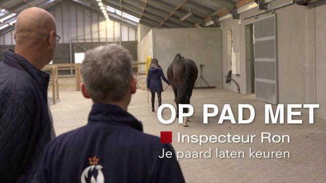 Op pad met de inspecteur - Je paard laten keuren