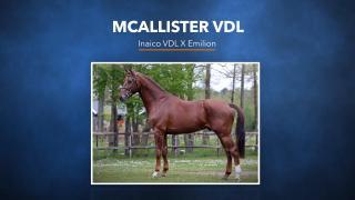 18. McAllister VDL