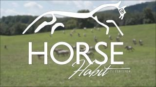 Horse Habit TV S1 Episode 8