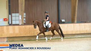 Medea - Furst Romancier x Rousseau