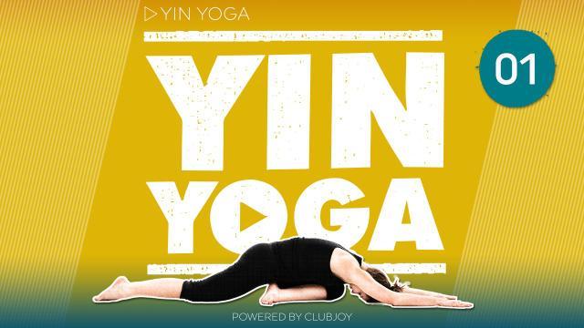 Yin Yoga 1